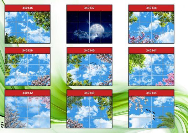 پنل آسمان مجازی طرح فصل بهار